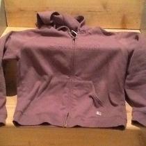 Plum Purple Carhartt Hoodie Photo