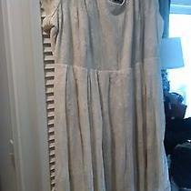 Plus Size Lace Dress  Photo