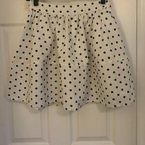 Polka Dot Short Fit and Flare Midi Express Skirt Sz 4 Photo