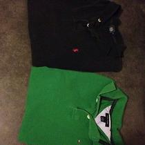 Polo Lot. Ralph Lauren and Tommy Hilfiger Photo