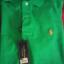 Polo Ralph Lauren Photo