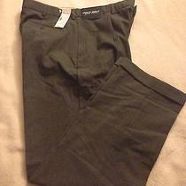 Polo Ralph Lauren Pants Photo