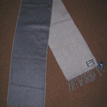 Polo-Ralph Lauren Reversible Blue Lambs Wool Pony Scarf (Made in Italy) Photo