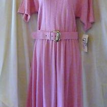 Popovitch Size 10 Blush Pink Stretch Knit Belted Dress New Nwt Photo