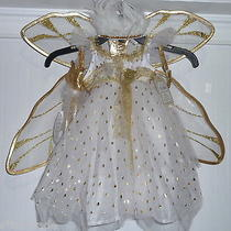 Pottery Barn Kids 4-Piece Gold Snow Fairy Costume W/tulle Treat Bag 3t New Photo