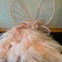 Pottery Barn Kids 5 Piece Monique Shuillier Blush Fairy Costume 3t New With Tags Photo
