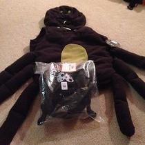 Pottery Barn Kids Pbk Spider Costume 2t/3t Halloween 2 3 Yr No Treat Bag Photo