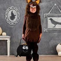 Pottery Barn Kids Wolf Costume 2t 3t & Treat Bag Pbk Halloween Dress Up Photo
