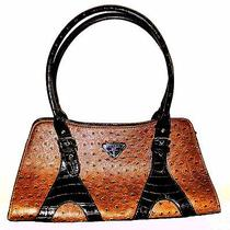 Prada Designer Inspired Handbag Photo