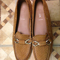 Prada Loafers Shoes  Photo