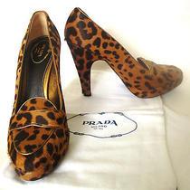 Prada Milano Leopard Calf Hair Leather Platform Shoe 5