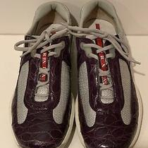 Prada Puple Crocodile Fasion Sport Sneaker Sz 38 1/2 Limtd Addition  Special Photo