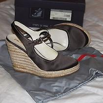Prada Shoe Photo