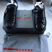 Prada Sneakers Photo