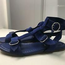 Prada Suede Leather Navy Gladiator Sandals Flat Buckle Size 8  38   Photo