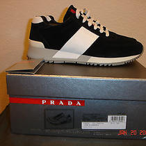 Prada Suede Shoes Photo
