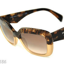 Prada Sunglasses Spr 03q Col. Roz-0a6 Brown Havana New Photo