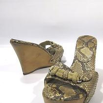 Prada Women Platform Wedges Sandalsclogs Snake Skin Embossed Leather Beiges 40 Photo