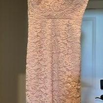 Pre-Owned Bebe Sexy Blush Lace Corset Dress Size Small Photo
