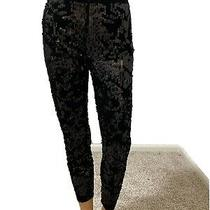 Pre-Owned  Express Women Velvet Sequins High Rise Leggings Pant Sz Xs Photo