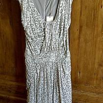 Price Reduction Rebecca Taylor Dress Size M Photo
