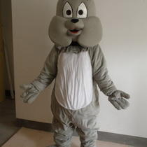 Professional New Grey Dog Mascot Costume Fancy Dress Adult Size Photo