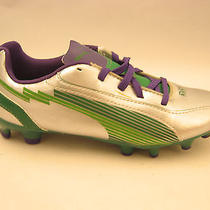Puma Boys Youth Evospeed 5 Fg Jr Soccer Cleats 2 Silver Green Violet 102595 New Photo