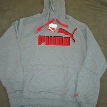 Puma Gray Hoodie Size Medium Photo