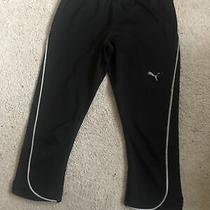 Puma Size 8 Workout  Running 3/4 Length Shorts  Photo