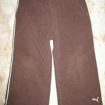 Puma - Sports Lifestyle - 18 Months - Pants - Brown - Boys Photo