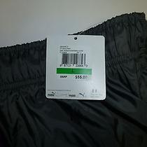 Puma Sweatpants Grey W/purple Stripe/zippered Pocket/zippered Ankle Nwt's Photo