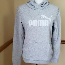 Puma Women's Elevated Logo Hoodie Light Gray Heather Size S Photo