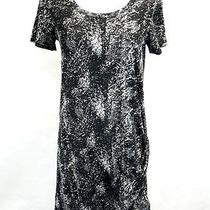 Pure Dkny Black Gray White Dress Xp Photo