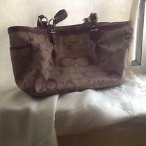 Purple Coach Bag Photo