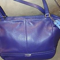 Purple Coach Handbag New Photo