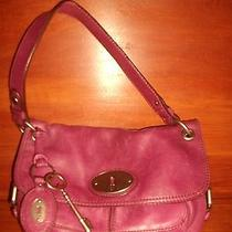 Purple Fossil Purse Photo