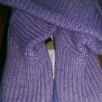Purple Knit Uggs Photo