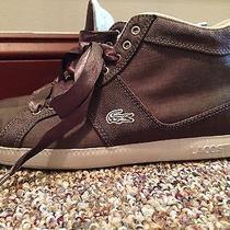 Purple Lacoste Shoes Photo
