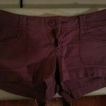Purple Massimo Shorts Size 1 Photo