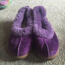 Purple Ugg Slippers Photo