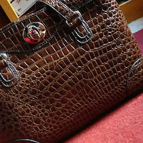 Purse Brown Photo