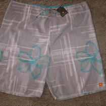 Quicksilver Gray Aqua Tropica Swim Trunks Shorts Nwt 38 Photo