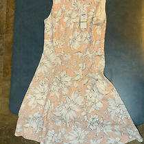 R & K Womens Size 4 Sleeveless Fit & Flare Pink & White Floral Dress Nwt Photo