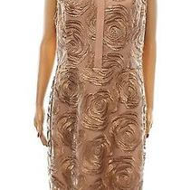 Rachel Roy New Blush Beige Women's Size 8 Shimmer Stitched Shirt Dress 179 142 Photo