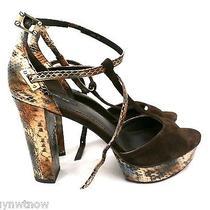Rachel Zoe Paloma Snakeskin Suede Platform T Strap Sandals 295 Nwob Sz 10 M Photo