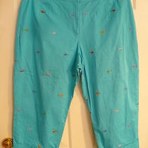 Rafaella Woman Aqua W/sunglasses Capris Sz 20w Photo