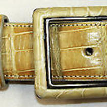 Ralph Lauren Alligator Belt With Sterling Silver Buckle Yellow Gold 30 Photo