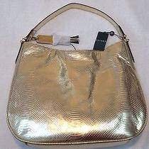 Ralph Lauren Banbury Snake Hobo Gold 4311663410fk Photo