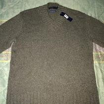 Ralph Lauren Polo Shirts Photo