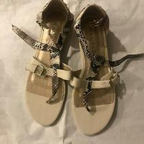 Rampage Off White/faux Snakeskin T Strap Sandals W/buckle Closure New Sz 10 Photo